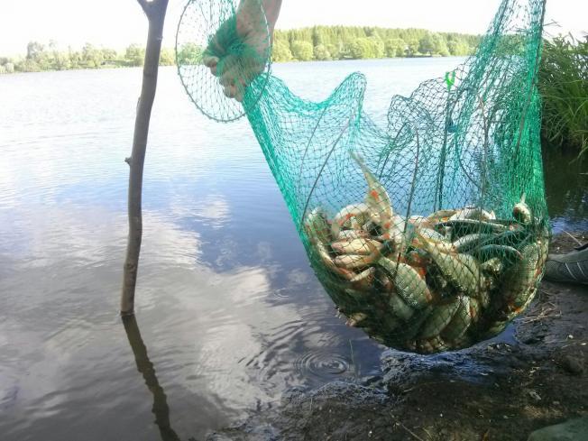 рыбалка в тамбовской области сегодня