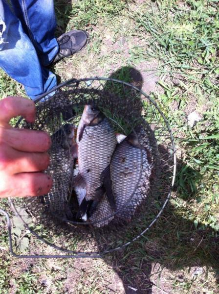 рыбалка на ветерке